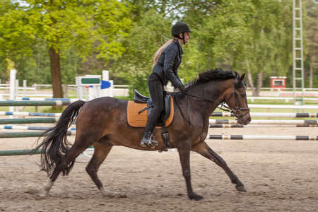 the fair haired: Muchacha con su caballo marr�n New-Forest-Pony en el campo, mientras que salto
