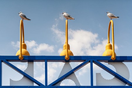 Three seaguls perched on top of matching lights on the end of a pier