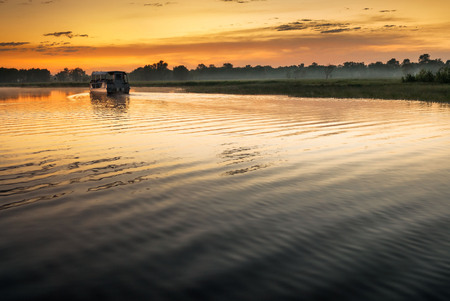Single boat on Yellow Water billabong in golden dawn light, Northern Territories, Australia