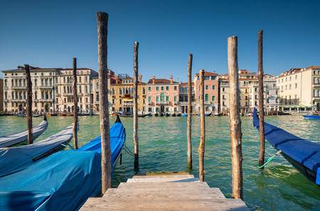 Gondolas moored along the green waters of Venice Grand Canal