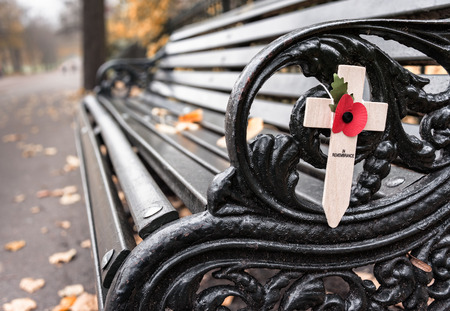 Empty bench with Poppy appeal remembrance cross with fallen leaves (Rememberance Day)