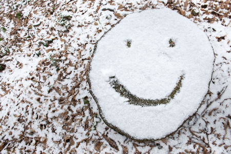 Smiley face emoji drawn on snow covered tree stump