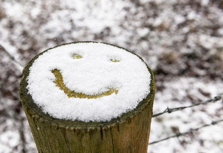 Smiley face emoji drawn on snow covered tree stump
