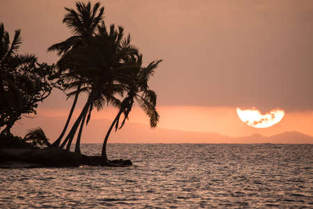 meer: Sunset with palms, sea and clouds Stock Photo