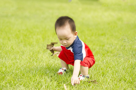 Adorable baby boy pick leaf up on the grass Stock Photo