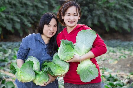 Women and green cabbages