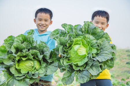 Happy young twin brother with green cabbage