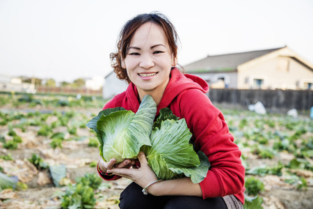 Woman and green cabbages