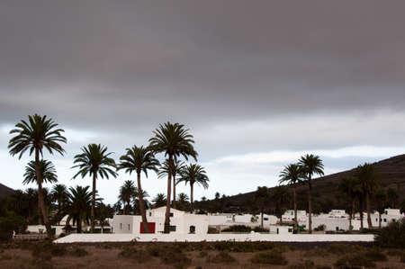 lanzarote: Haria, Lanzarote Stock Photo