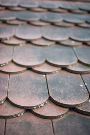 old house red roof tiles photo