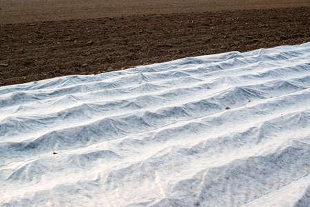 Field with greenhouse Standard-Bild