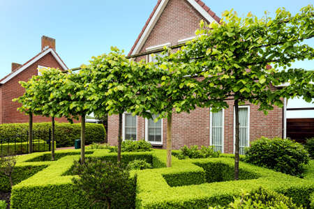 Decorative green buxus bushes and trees in front of a beautiful house in the Netherlands Standard-Bild