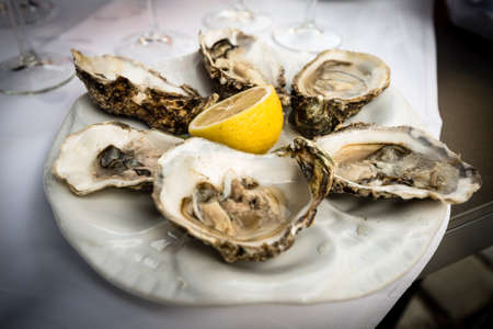 dozen: Hald dozen fresh oysters on a white plate with a lemon Stock Photo