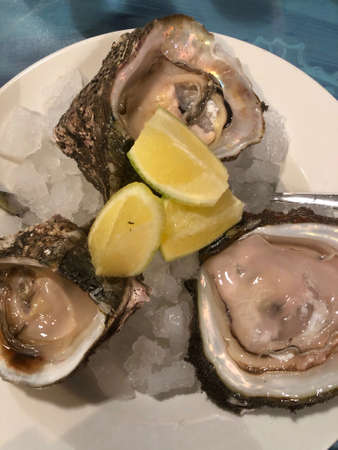 Opened oysters on a plate
