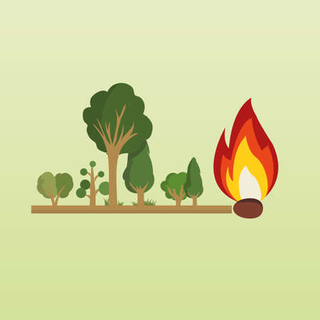 inflamation: Risk of fire in the forest