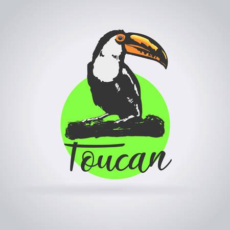 Wildlife toucan logo: Green background