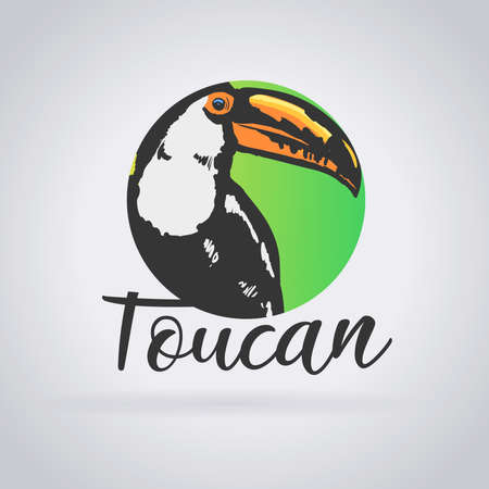 Logo toucan. Wild life tropical: Toucan with three colors. Green background imitating the jungle. Vector image