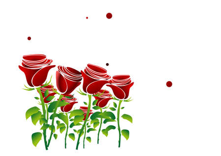 Background rose love