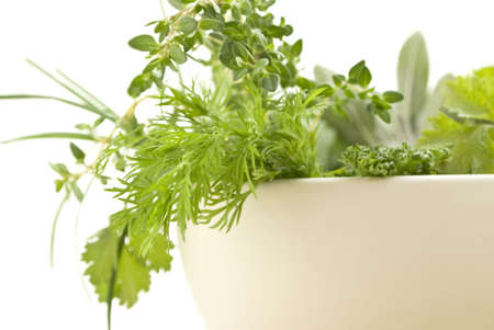 herbalist: Closeup of a selection of fresh herbs spilling over the rim of a cream bowl (from a pestlemortar set).  Dil, curled parsley and lemon thyme in foreground.  Sage and chives in background.  Shallow depth of field.  White background.
