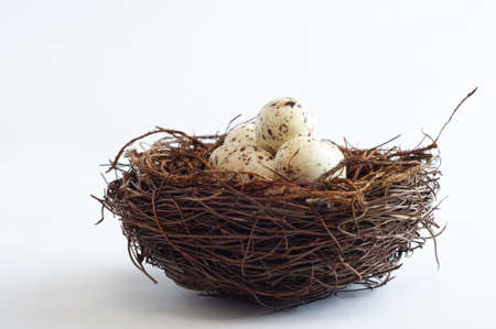 A bird nest made from twigs, containing light speckled fake eggs. Imagens