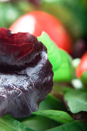 Close up (macro) of a red lettuce leaf, with green rocket salad and tomatoes in background photo