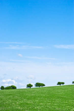 sloping: A grassy, gently sloping hill against a blue sky, with trees along the horizon.   Stock Photo