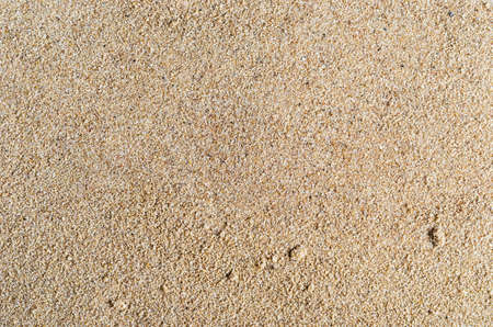 unrefined: A background texture of unrefined, damp and grainy natural golden sand.