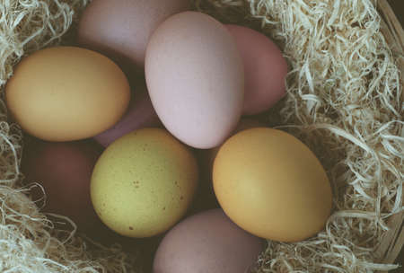 nested: Overhead shot of painted Easter eggs, nested in dried grass.
