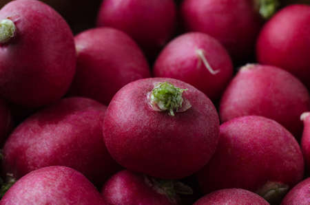 piled: Close up (macro) of red radishes, piled up and filling frame with green stalks visible. Dark lighting. Stock Photo