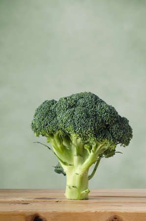 tree vertical: A whole head of raw broccoli on a wood plank table, standing upright on stem against a green background with copy space above.