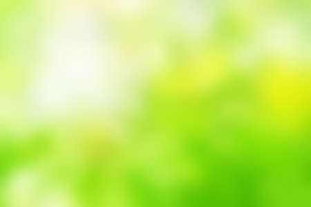 Soft  background blur from photograph of natural foliage.  Dappled and blended bright Spring greens with yellows and white sunlight.