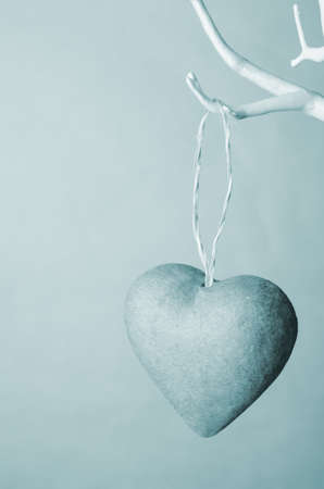 hues: One heart ornament hanging by string  from bare white branches of artificial tree. Tinted in cool wintery blue hues. Stock Photo