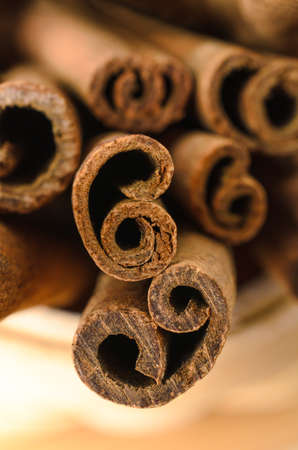 facing to camera: Close up (macro) of cinnamon sticks with the ends facing camera to show their curls.  Shallow depth of field.