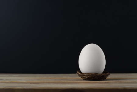 An upright chicken's egg (whitened) in small nest on wood plank table.
