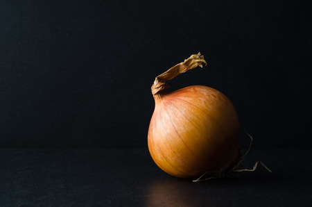 intact: One single whole onion, unpeeled with root intact on black slate against chalkboard background. Stock Photo