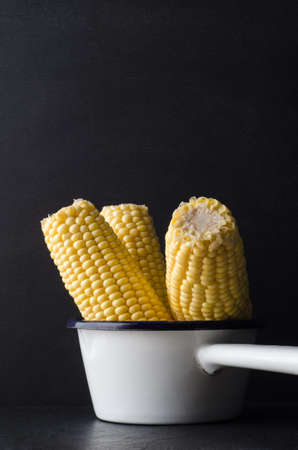 grouped: Three sweetcorn cobs, grouped upright in a small white enamel cooking pan on black slate with chalkboard background. Stock Photo