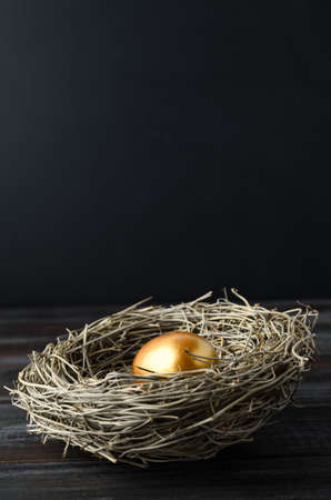One single gold painted egg in a birds nest on dark wood plank table with black chalkboard background providing copy space above. Stock Photo