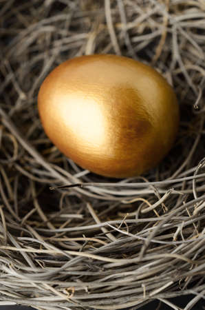 Close up of one single gold painted egg in a birds nest.