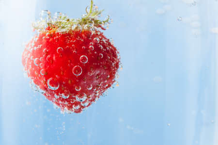 fizzy: Close up of a bright red fresh strawberry with green leaves, flloating in light blue sparkling water and covered in bubbles. Copy space to right. Stock Photo
