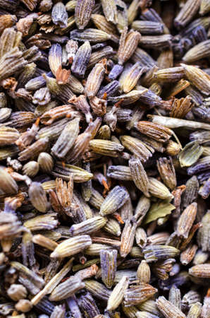 Natural dried Lavender buds as natural floral or herbal background.