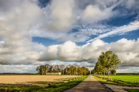 Long straight asphalt road line with trees, with a farm in the distance, under a spectacular sky in autumn in Noordoostpolder (North East Polder), the Netherlands
