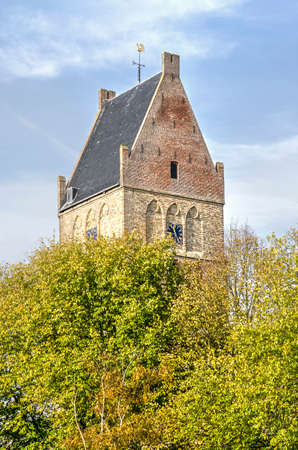 Bolsward, The Netherlands, November 4, 2018: the twoer of Martini church rising above the foliage of surrounding trees in auutmn colors