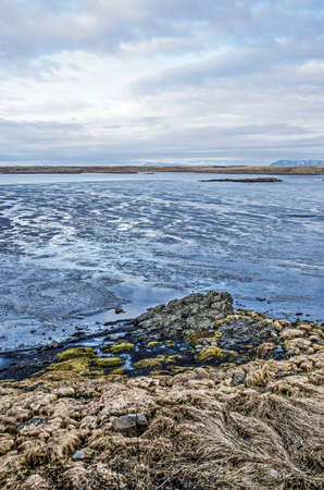View from a low cliff near the town of Borgarnes, Iceland towards a beach with rocks, seaweed and other vegetation and towards the intricate streaming patterns on the adjacent mudflats