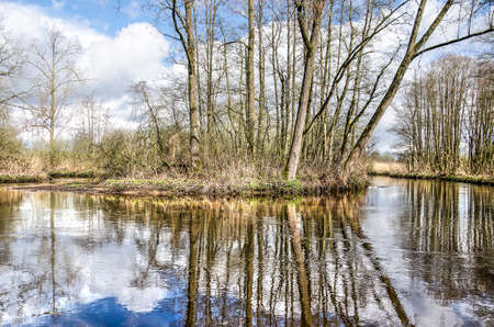 Trees and bushes growing in a bend in the river Dommel near Valkenswaard, The Netherlands reflecting in the water surface on a beautiful day in springtime
