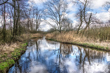 View of the river Dommel near Valkenswaard, The Netherlands in which trees, bushes and the sky reflect on a day in springtime