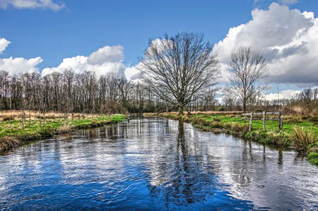 Landscape in the valley of the river Dommel near Valkenswaard, The Netherlands, with forests, solitary trees and meadows under a blue sky with scattered clouds Stockfoto