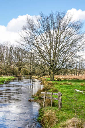 View along the grassy bank of the river Dommel near Valkenswaard, The Netherlands, with an old wooden fence, a tree, meadows and woodland Stockfoto