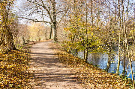 Footpath along the river Geul lined with trees and bushes in autumn colors near Valkenburg, , The Netherlands