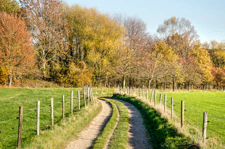 Meandering dirt road lined with a fence with wooden poles and electric wire in a landscape with geen meadows and woodland in autumn colors near Valkenburg, The Netherlands