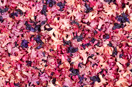 Top view of a box of hyacinth petals in hues between white, pink, blue and purple Stockfoto